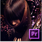 Adobe Premiere Pro CS6 Win ENG - UPGRADE z CS5.5