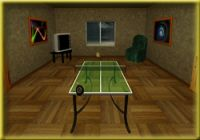 Table Tennis Pro Deluxe