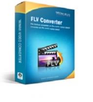 WinAVI FLV Converter