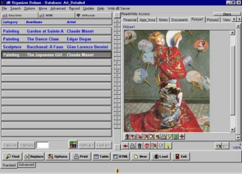 art_antiques_software_template_detailed_picture.jpg