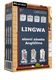 LINGWA slovní zásoba - Angličtina