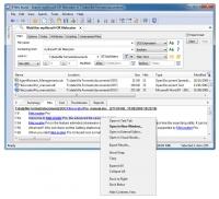 FileLocator Pro - Upgrade 1 rok