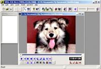 Womble MPEG-VCR