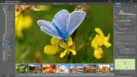 Zoner Photo Studio X ? na 1 rok pro 1 uživatele na licenční kartě