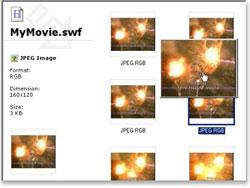 swfextractor-screenshot3-sm.jpg