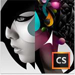 Adobe Creative Suite CS6 Design Standard WIN CZ FULL