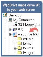 WebDrive 5 licencí
