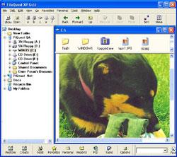 FileQuest Lite