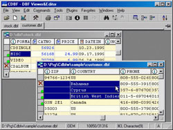 DBF Viewer and Editor Personal