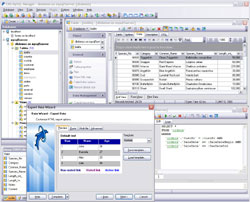 EMS SQL Manager for MySQL Windows edition Business