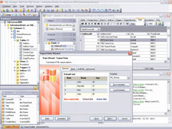 EMS MS SQL Manager Professional