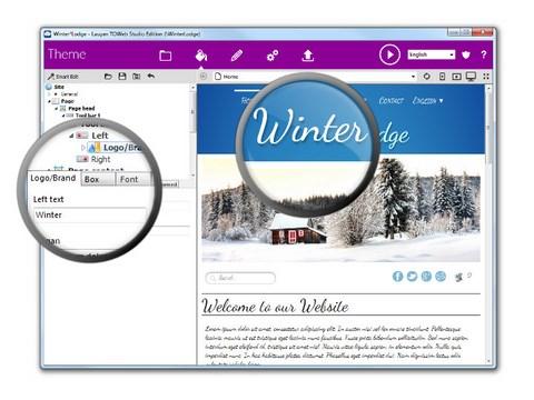 toweb-theme-editor-en.jpg
